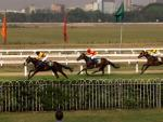 A day at the races, Kolkata